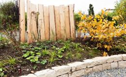 stauden pflanzen garten bepflanzung gärtner