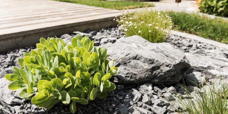 Gartengestaltung-Bepflanzung-n3