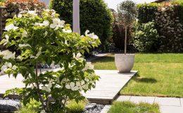 Gartengestaltung-Bepflanzung-n4