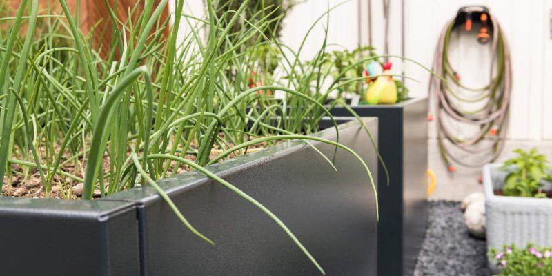 Gartengestaltung-Bepflanzung-n6
